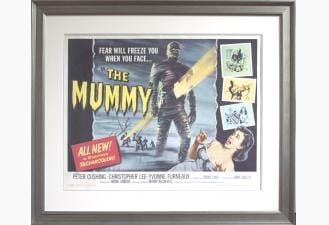 Framing Movie Posters 5